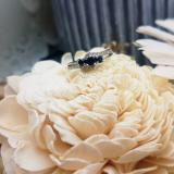 0.45 Carat (ctw) 14K White Gold Round Blue Sapphire & White Diamond Ladies 3 Stone Bridal Engagement Promise Ring 1/2 CT