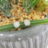 0.35 Carat (ctw) 14K White Gold Round Cut White Diamond Ladies Circle Halo Stud Earrings